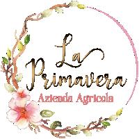""""""" La Primavera """""""