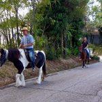 Te paard voor een prachtige rit